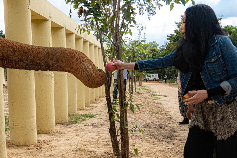 Singer Cher interacts with Kaavan, an elephant transported from Pakistan to Cambodia, at the sanctuary in Oddar Meanchey Province
