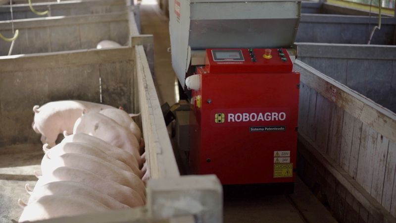 Roboagro robot feeds pigs while playing classical music on a farm in Brazil