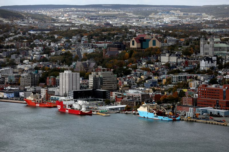 Ships are seen docked in the St. John's Harbour