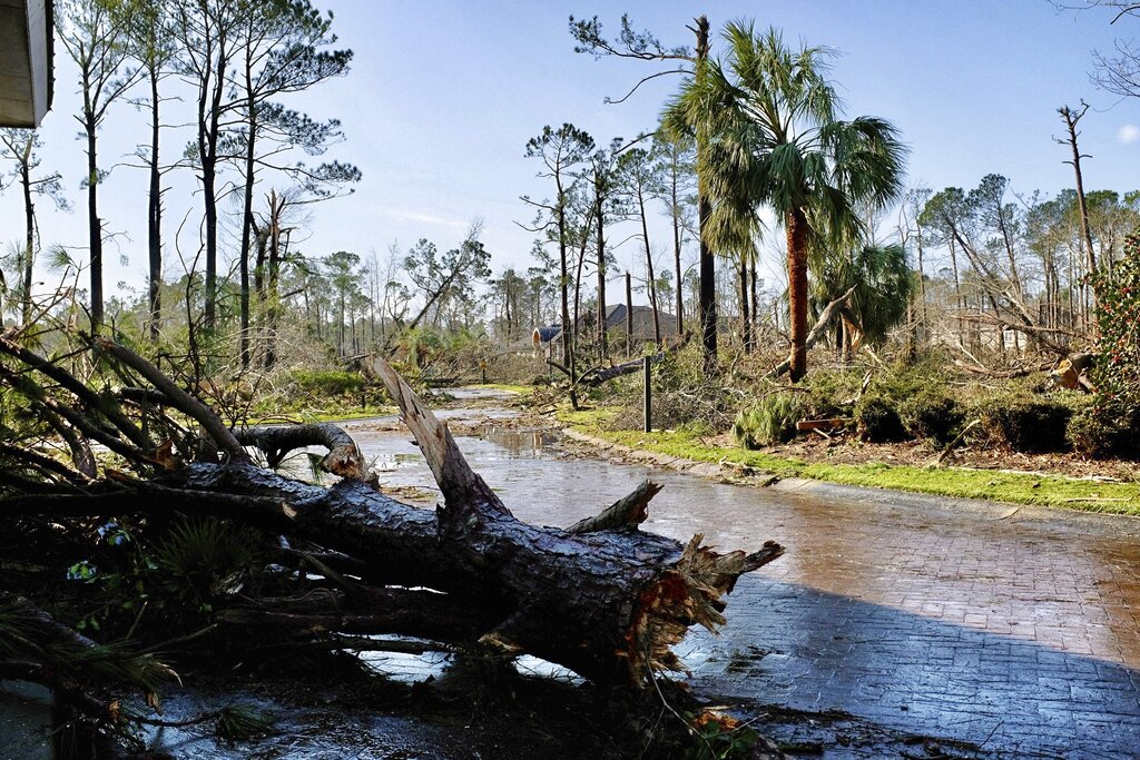 Fallen trees litter the ground after a tornado tore through a residential area of Brunswick County, N.C., Tuesday, Feb. 16, 2021, killing multiple people and injuring others in its trail of destruction. (James Lee/The News & Observer via AP)