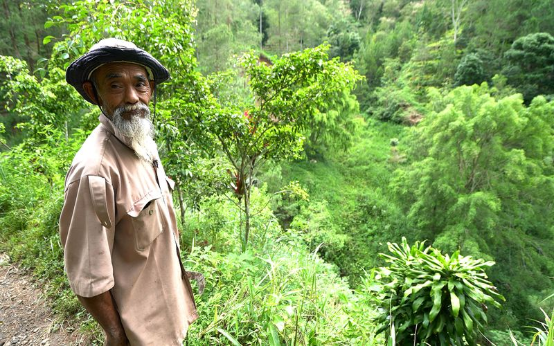 Sadiman, a 69-year-old ecowarrior, stands near a hill which is the first area he replanted with trees 20 years ago, in Wonogiri