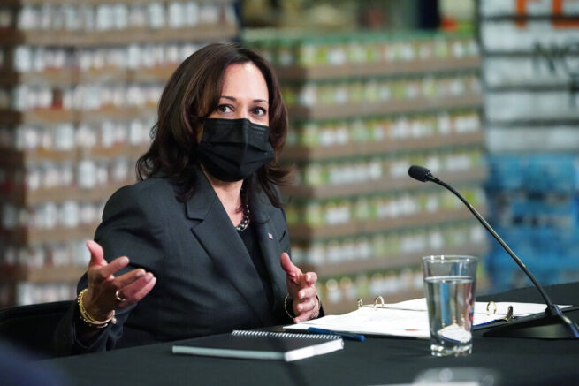 Vice President Kamala Harris speaks during a round table listening session at Feeding Northeast Florida, Monday, March 22, 2021, in Jacksonville, Fla. (AP Photo/Jacquelyn Martin)