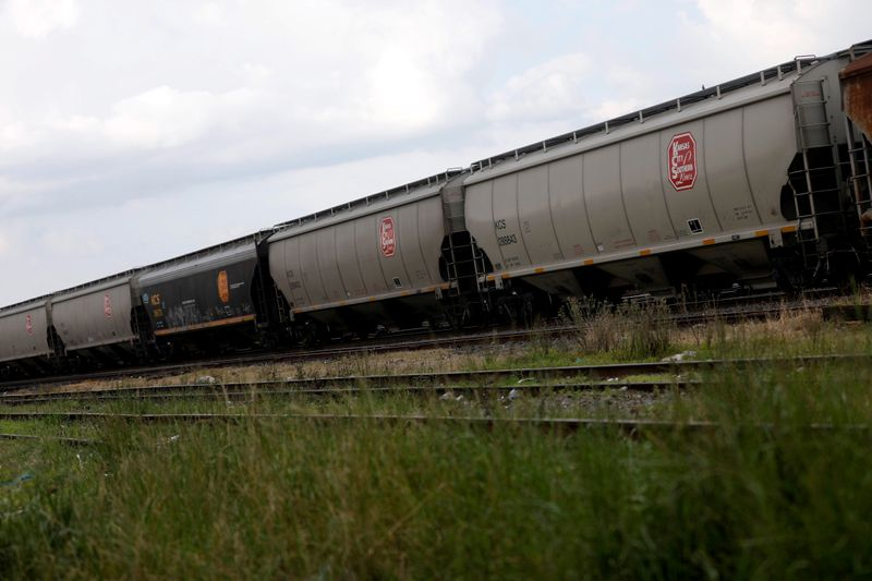 FILE PHOTO: A freight train of KCS Railway Company is pictured in Toluca