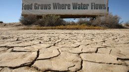 """BUTTONWILLOW, CA - APRIL 16: A sign on a farm trailer reading """"Food grows where water flows,"""" hangs over dry, cracked mud at the edge of a farm April 16, 2009 near Buttonwillow, California. Central Valley farmers and farm workers are suffering through the third year of the worsening California drought with extreme water shortages and job losses. The office of California Gov. Arnold Schwarzenegger predicts Central Valley farm losses of $325 million to $477 million and total losses for crop production and related business to be between $440 and $644 million. Central Valley is expected to lose 16,200 to 23,700 full-time jobs and food prices are expected to rise nationwide. (Photo by David McNew/Getty Images)"""