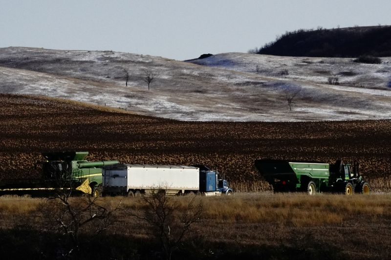 FILE PHOTO: An agricultural combine, tractor and trailer, and semi truck are parked alongside corn fields during the fall harvest as the coronavirus disease (COVID-19) outbreak continues in Livonia