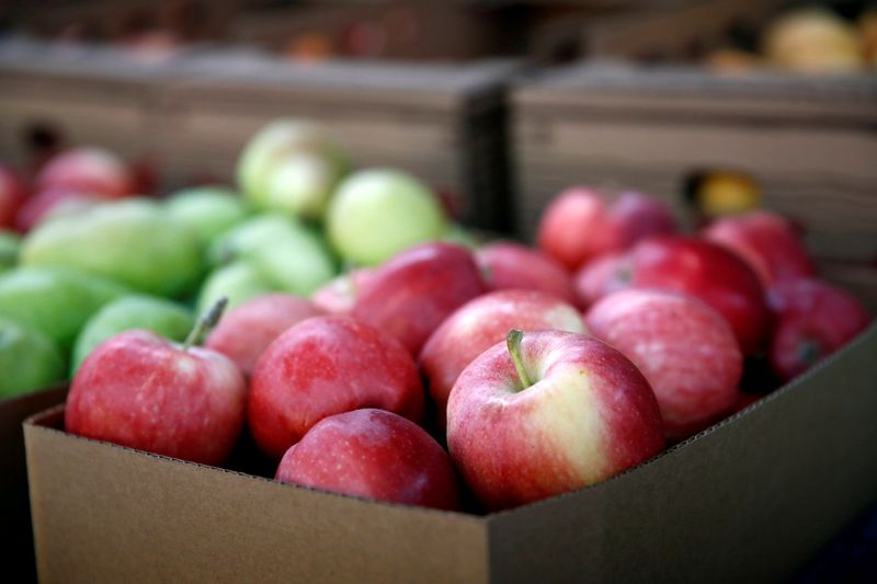 FILE PHOTO: Gala apples are for sale at the B&B Fruit Stand in East Wenatchee