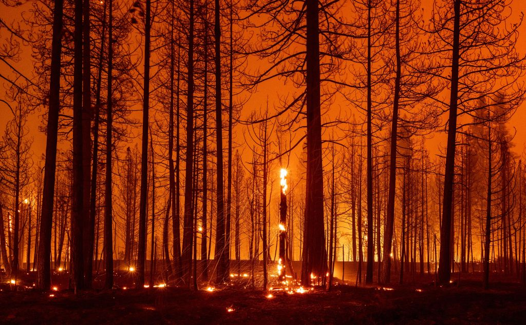 In this long exposure photograph, trees smolder and burn during the Dixie fire near Greenville, California on August 3, 2021. - The Dixie fire has burned more than 250,000 acres and continues to get closer to residential communities. The 2017 Thomas Fire is now only the seventh worst by area destroyed -- and is likely to be overtaken soon by the Dixie Fire raging through the state's northern forests, as climate change makes wildfire season longer, hotter and more devastating. (Photo by JOSH EDELSON / AFP) (Photo by JOSH EDELSON/AFP via Getty Images)