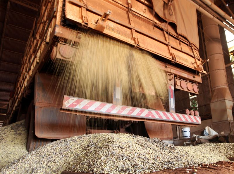 FILE PHOTO: Soybean is unloaded from a truck at the Alvorada agricultural industry in the city of Primavera do Leste