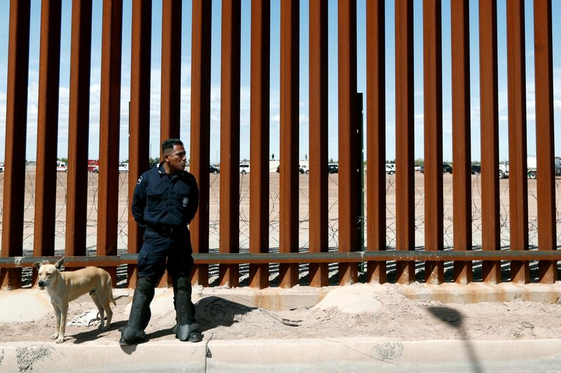 FILE PHOTO: A Mexican federal police member stands guard near the U.S.-Mexico border in 2019