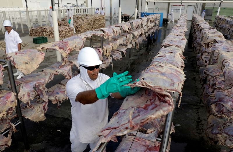 FILE PHOTO: A worker spreads salted meat which will be dried and then packed at a plant of JBS S.A, the world's largest beef producer, in Santana de Parnaiba