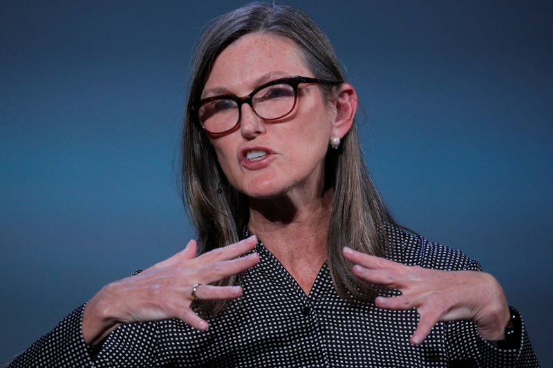 FILE PHOTO: Cathie Wood, founder and CEO of ARK Investment Management LLC, speaks during the Skybridge Capital SALT New York 2021 conference in New York