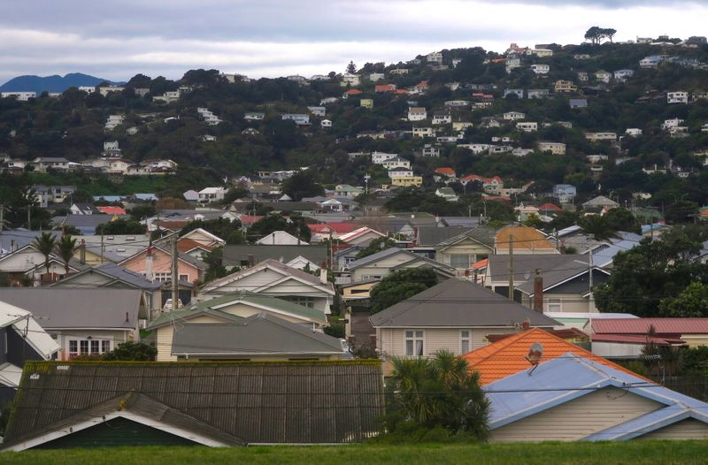 FILE PHOTO: Residential houses are seen in Wellington, New Zealand